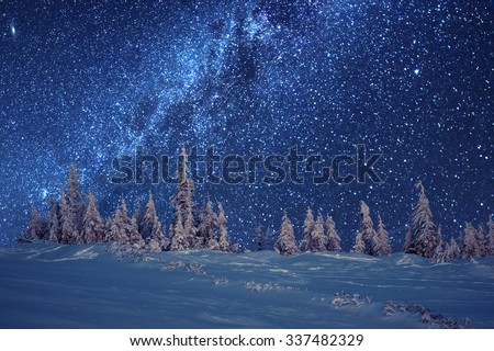 winter forest and milky way - stock photo