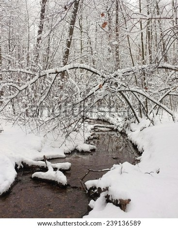 Winter forest  creek. Snowy branches hung over the water. - stock photo