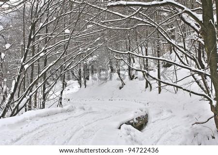 Winter forest frozen bridge - stock photo