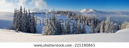 Winter forest in mountains. Snow on the trees. Christmas landscape  - stock photo