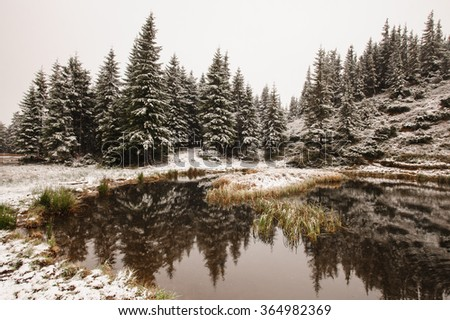Winter forest reflection on the snowy lake - stock photo