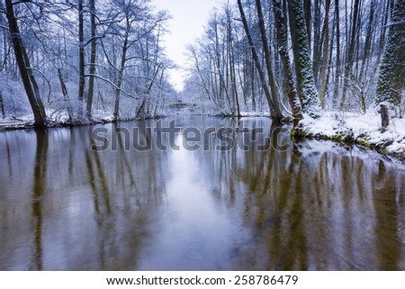 winter forest with beautiful river - stock photo