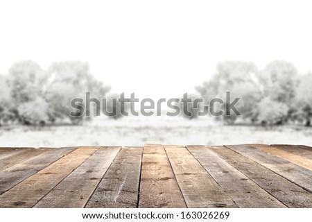 winter garden and wooden floor  - stock photo