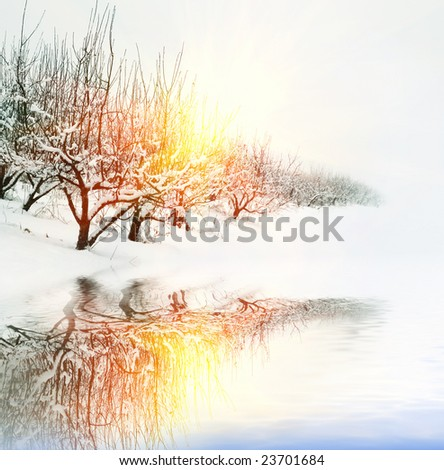 winter garden in the rays of sunset and reflection is in water - stock photo