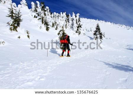 Winter hike. - stock photo