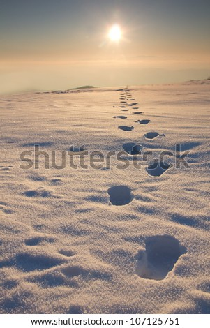 winter hiking - stock photo