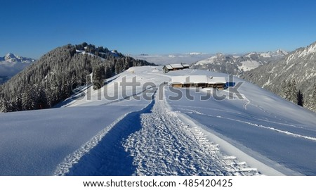 Winter hiking and sledging path on Mt Hohe Wispile, Gstaad. Travel destination in the Swiss Alps.