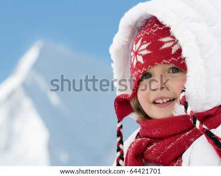Winter holiday - stock photo