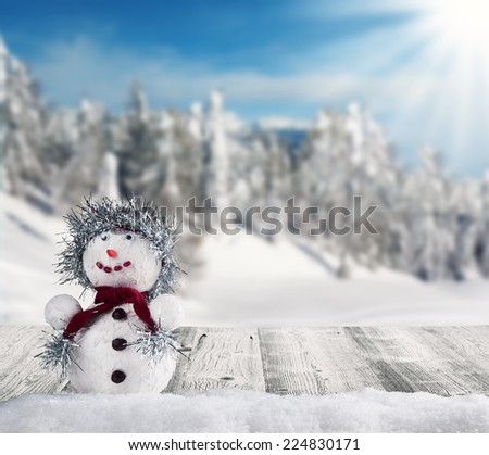 Winter holiday happy snow man with blur landscape on background - stock photo