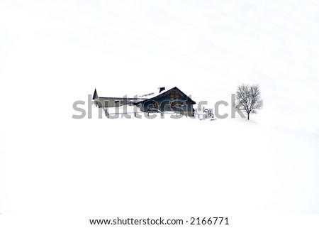Winter home with tree in snow. - stock photo