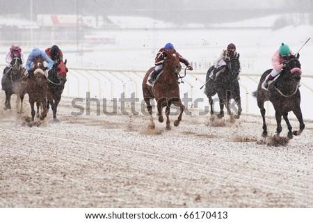 Winter horse racing - stock photo