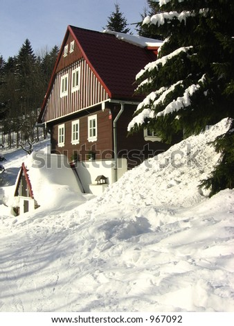 Winter house with a tree and lot of snow around in warm sun