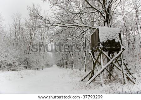 winter hunting - stock photo