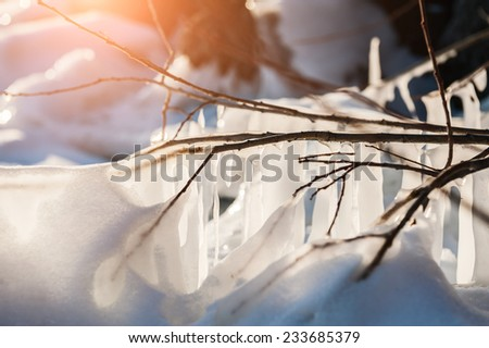 Winter icicle on the lake. Macro image. Small depth of sharpness - stock photo