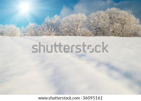Winter icy landscape with bright shining day