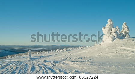Winter in Lapland. Finland - stock photo