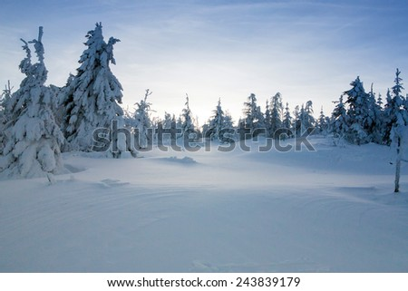 Winter in mountains - stock photo