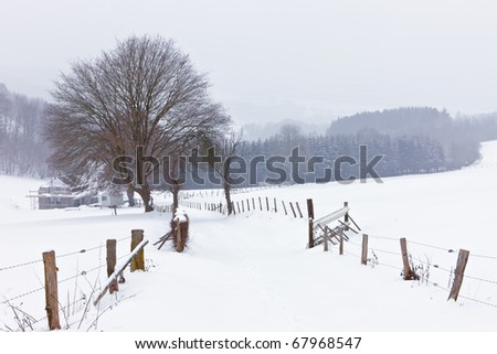 Winter in the Ardennes - stock photo