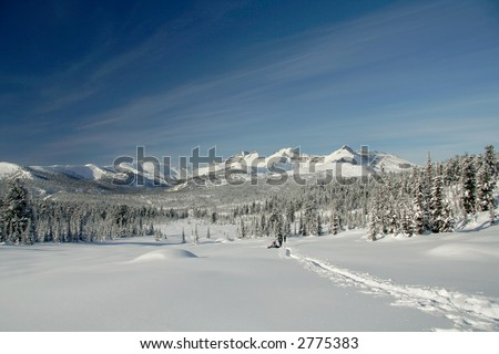 Winter in the forest with trees downhill covered in snow and mountains in the background - stock photo