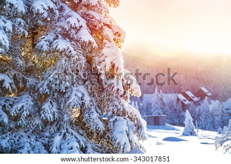 Winter in the mountains, beautiful landscape, big coniferous tree covered with snow, mountainous village, luxury wintertime resort, Alps, Europe - stock photo