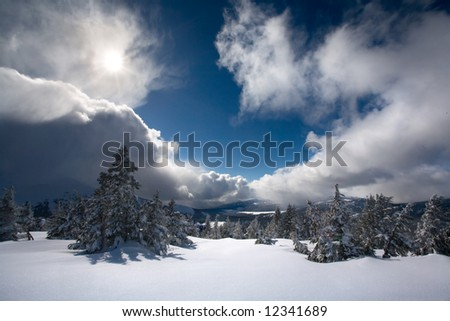 Winter in the Three Sisters Wilderness - stock photo