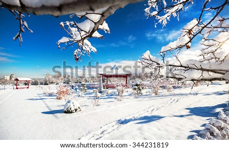 Winter Japanese garden with red pagoda at mountains and blue sky in dendra park of first president in Almaty,  Kazakhstan - stock photo