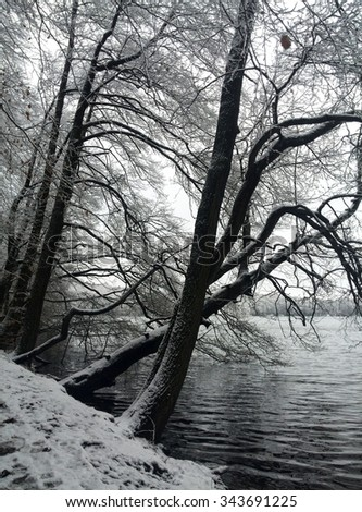 Winter Lake - stock photo