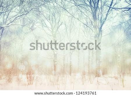 Winter landscape. - stock photo