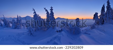 Winter landscape at dusk. Panorama of forest in snow - stock photo