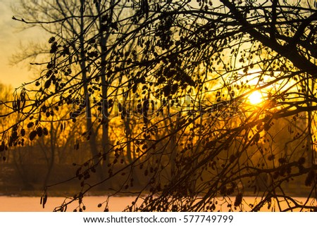 Winter landscape at sunset in the evening