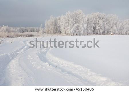 Winter landscape, car trail in fresh deep snow - stock photo