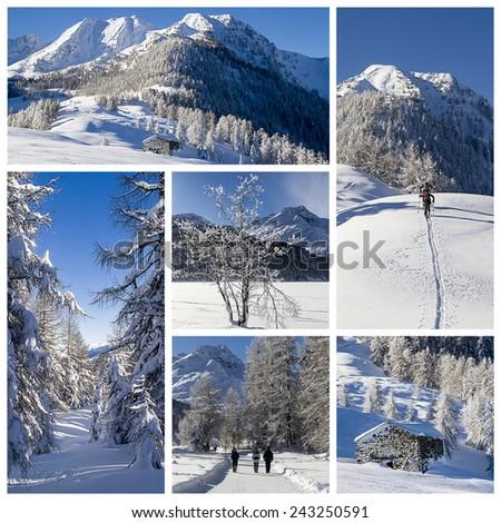 Winter landscape collage - stock photo