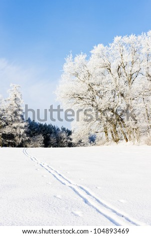 winter landscape, Czech Republic - stock photo