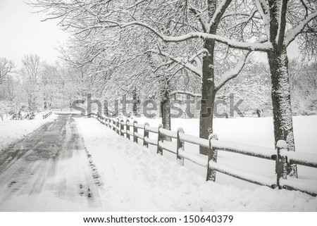 Winter landscape depicting a tree, a fence and snow - stock photo