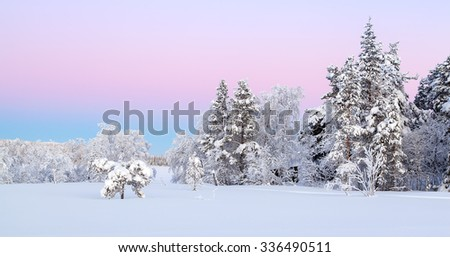 Winter landscape from Lapland,Pallastunturi
