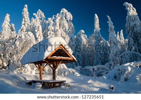 Winter Landscape. Frosty day in the woods. Winter's Tale. Tourist destination. Gazebo in the woods. - stock photo