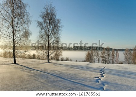Winter landscape in a morning at the river. - stock photo