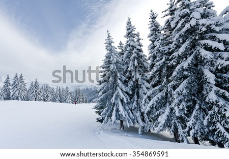 Winter landscape in mountains with snow and snow covered trees   - stock photo