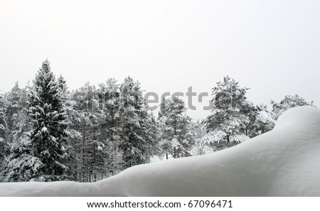 Winter Landscape in Northwest Russia - stock photo