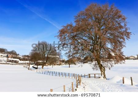 Winter landscape in the Ardennes, Belgium. - stock photo