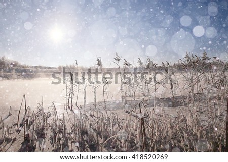 winter landscape in the background field - stock photo