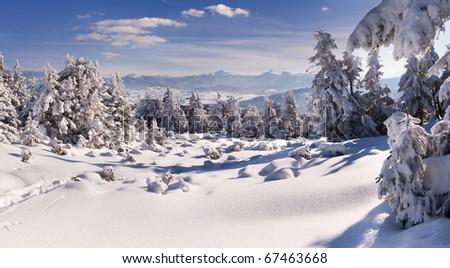 winter landscape in the Carpathian mountains - stock photo