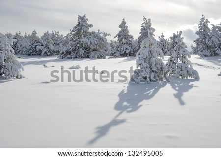 Winter landscape in the Crimean mountains. - stock photo