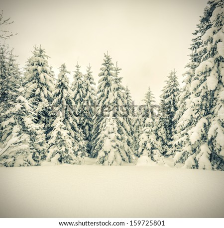 Winter landscape in the forest. Retro stile - stock photo