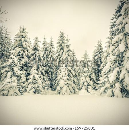 Winter landscape in the forest. Retro stile - stock photo