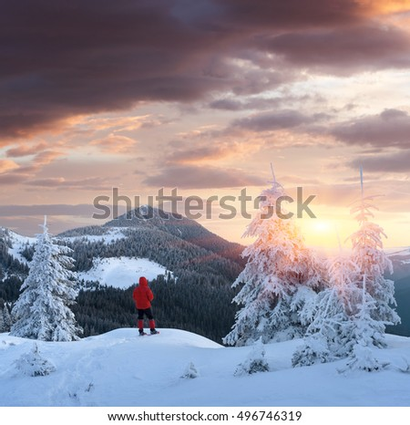Winter landscape in the mountains. Tourist in a red jacket on a hill. Carpathians, Ukraine, Europe