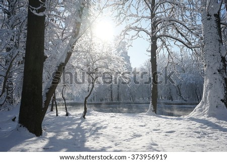 Winter landscape in the park in a cold, but sunny day. High resolution and beautiful snow details