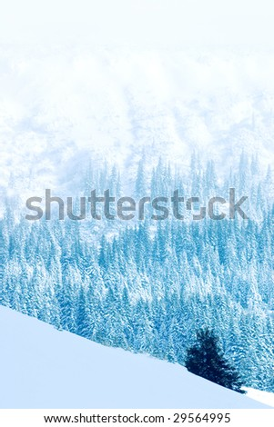 Winter landscape in the Romanian mountains