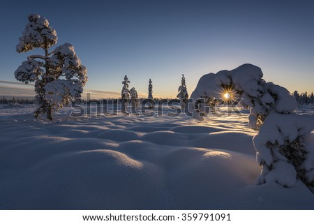 winter landscape, Lapland, Sweden - stock photo