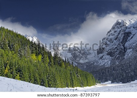 winter landscape - mountains